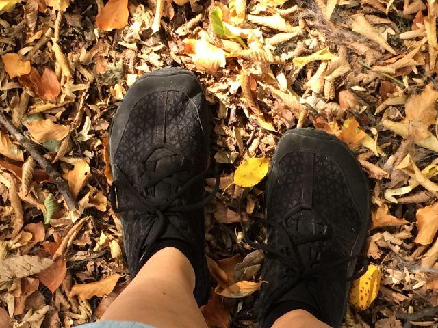 Barfußschuhe von Joe Nimble im herbstlichen Wald