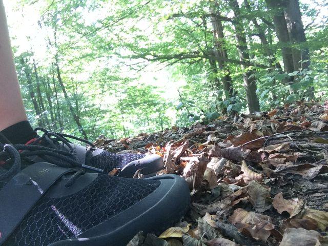 Mit Barfußschuhen durch den Wald laufen