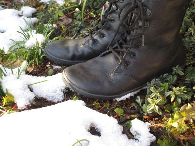 Barfußschuhe Gobi Ladies Hi Top im Schnee